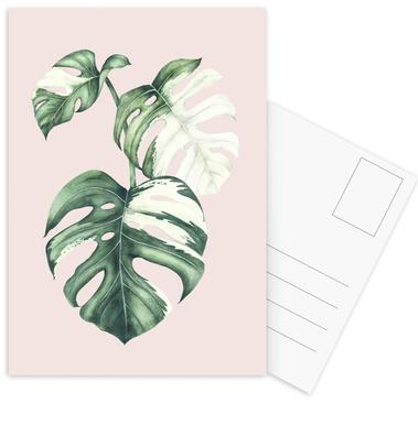 Tropical No. 4 Postcard Set