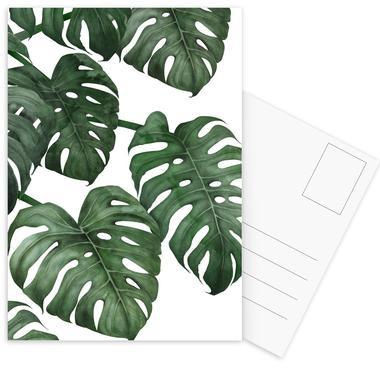 Tropical No. 6 cartes postales