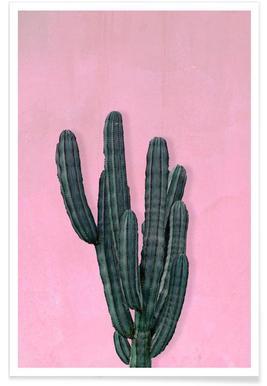 Kaktus - Premium poster