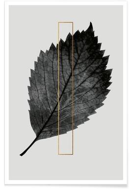 Plants I affiche