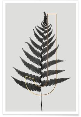 Plants J - Poster