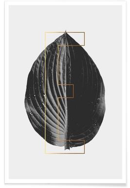 Plants E -Poster