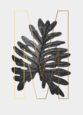 Plants M Canvas Print