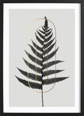 Plants O -Bild mit Holzrahmen