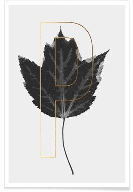 Plants P Poster