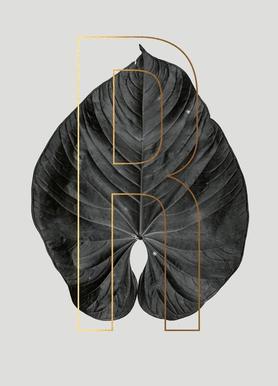 Plants R Canvas Print