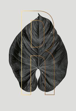 Plants R Aluminium Print