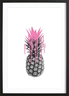 Pink Ananas