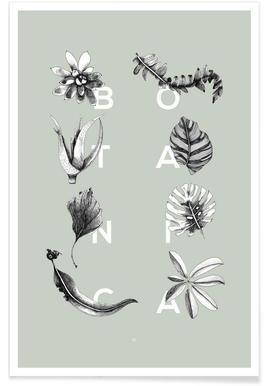 Botanica Letters affiche