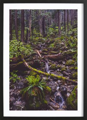 Canada 1 Framed Print