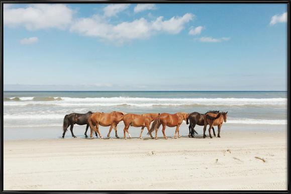 Beach Horses Framed Poster