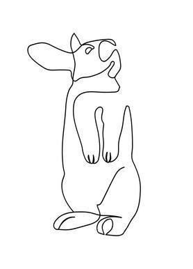 Rabbit 2 canvas doek