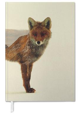 Mountain Fox agenda