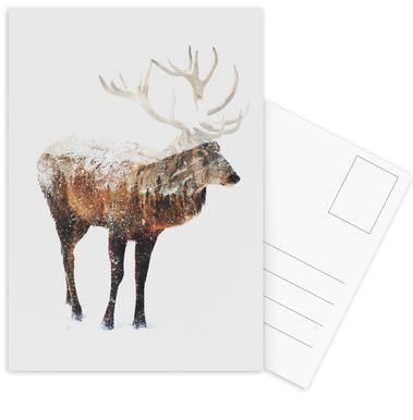Arctic Deer -Postkartenset