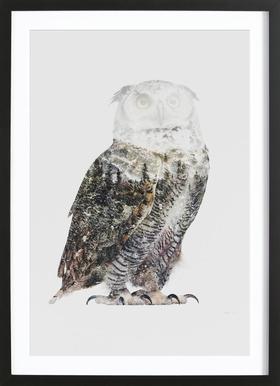Artic Owl -Bild mit Holzrahmen