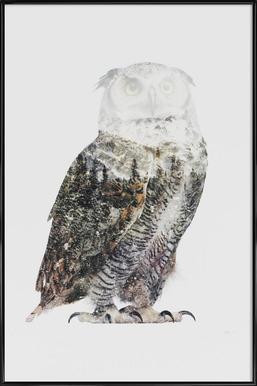 Artic Owl -Bild mit Kunststoffrahmen