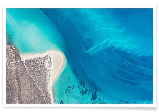 Shark Bay 5 affiche
