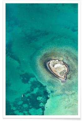 Shark Bay 7 - Premium poster