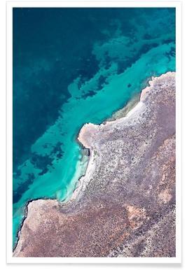 Shark Bay 9 - Premium poster