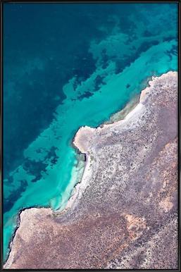 Shark Bay 9 - Poster in Standard Frame