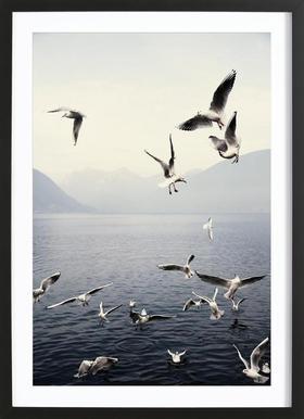 Seagulls -Bild mit Holzrahmen