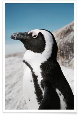 Penguin affiche