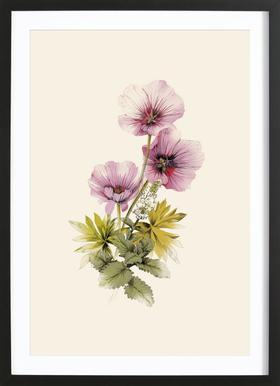 Geranium & Garden mint Framed Print