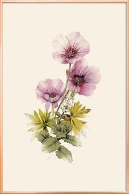 Geranium & Garden mint