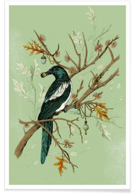 Magpie Jewels Poster