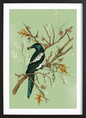 Magpie Jewels Framed Print