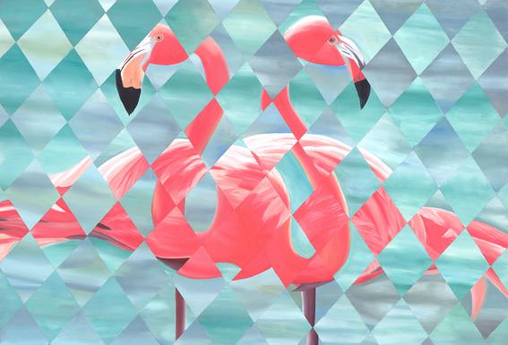 Flamingo Impression sur alu-Dibond