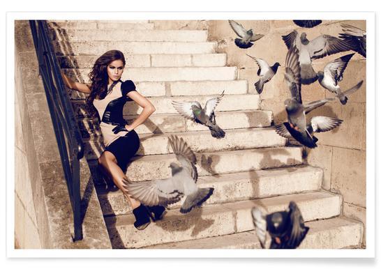 Doves in Paris Poster