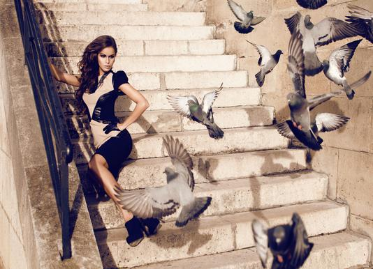 Doves in Paris Canvas Print