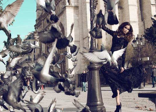 Doves in Paris II Canvas Print