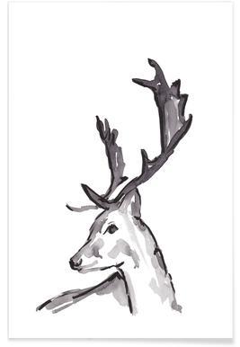 Deer -Poster