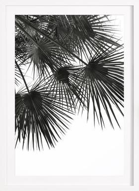 Endless Summer - Wind - Affiche sous cadre en bois