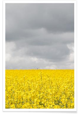 Grey Sky Meets Yellow Fields -Poster
