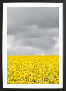 Grey Sky Meets Yellow Fields affiche sous cadre en bois