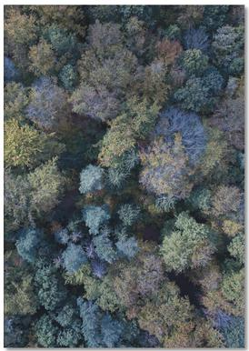 Autumn Forests from Above -Notizblock