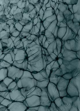 Abstract Life Canvas Print