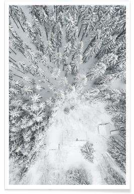 Calm Winter Poster