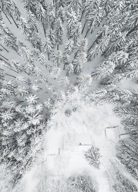 Calm Winter -Leinwandbild