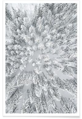 Snowy Forests affiche