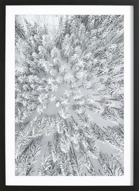 Snowy Forests Framed Print