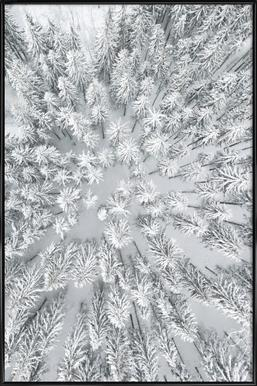 Snowy Forests Framed Poster