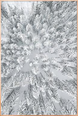 Snowy Forests poster in aluminium lijst