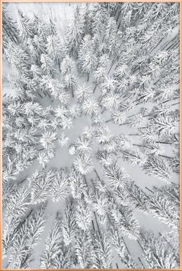 Snowy Forests affiche sous cadre en aluminium