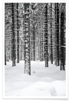 Deep Dark White Forest affiche