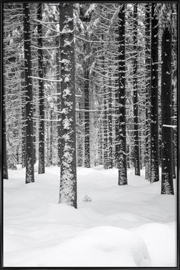 Deep Dark White Forest Framed Poster