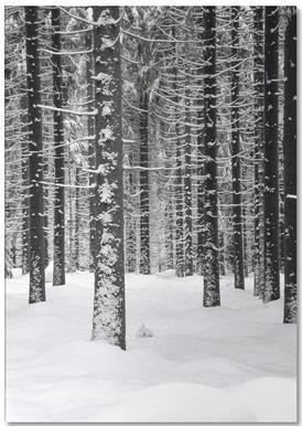 Deep Dark White Forest bloc-notes